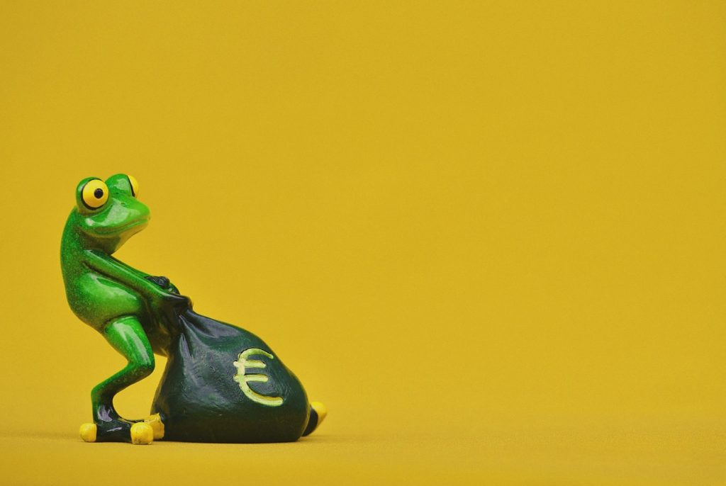 frog-1250541_1280